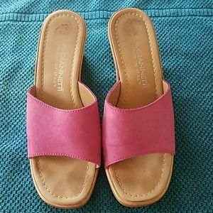 A. Giannetti Shoes - Pink Wedges