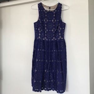 Ivy & Blu royal blue lace dress