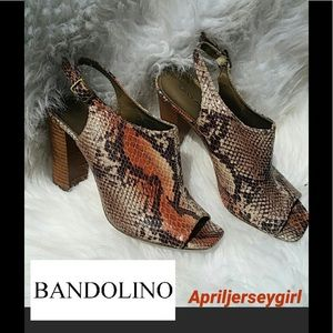 Bandolino Shoes - BANDOLINO- LEATHER SNAKESKIN MULES