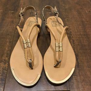 DV by Dolce Vita Shoes - DV by Dolce Vita Ayden T-Strap Sandal Size 7.5