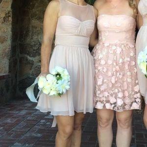 BCBG Maxazria Blush Dress