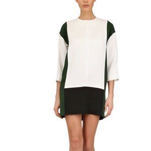 Celine Dresses & Skirts - Celine Colorblock Cady Shift Dress
