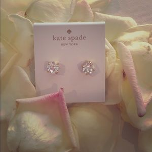 NWTs Kate Spade Clear Cueva Rosa Studs FIRM PRICE