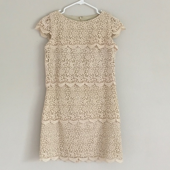 Eliza J Dresses & Skirts - Lace Dress