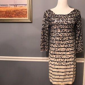 [J. Crew] Confetti Stripe Sweater Dress