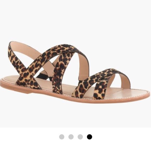 9871175b4 J. Crew Shoes - J. Crew Mackenzie Leopard Strap Flat Sandal - 8