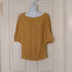 Ann Taylor LOFT dolman sweater