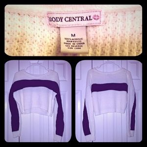 Body Central Crop Sweater