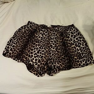 H&M Pants - Adorable Leopard Shorts