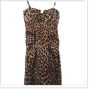 Cache Dresses & Skirts - Cache Leopard  Print Dress Bodycon