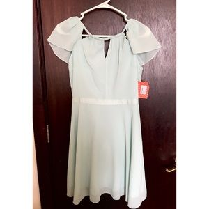 Moon Collection Dresses & Skirts - Mint Chiffon Skater Dress LuLu's
