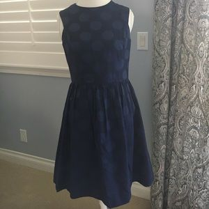 ivy and blu Dresses & Skirts - Ivy & Blue navy on navy polka dot fit & flare