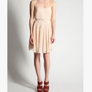 French Connection Dresses & Skirts - French Connection Blush Pleated Sweetheart Dress