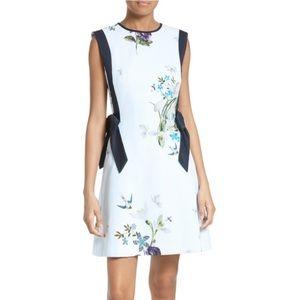 Ted Baker London Dresses & Skirts - Ted Baker Sipnela A-Line Dress sz 3 = 8