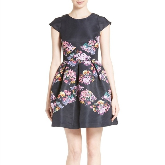 e83dbece9 Ted Baker Girley Lost Gardens Dress sz 3   8. M 59213e2cea3f3657d1087bf5