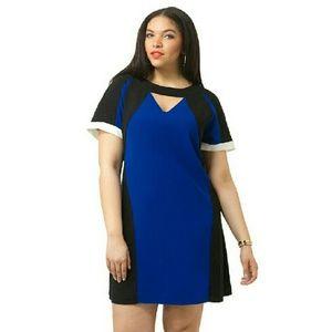 City Chic Dresses & Skirts - Color block DRESS
