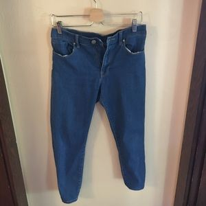BDG Denim - BDG high waisted blue twig grazer jeans