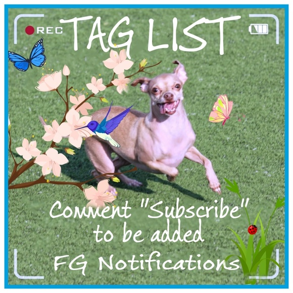 Tag List Accessories - TAG LIST IS  FULL! SIGN UP FOR WAITING LIST ONLY!