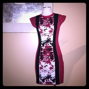 ARYEH Dresses & Skirts - ARYEH, bodycon sexy color block mid length dress.l
