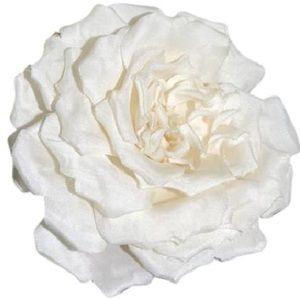 Auth CHANEL Cream Silk Camellia Rose Brooch