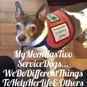 Accessories - ❤️RedtheRatTerrierServiceDog❤️