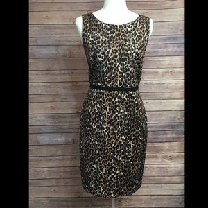 Ann Taylor Loft leopard Dress