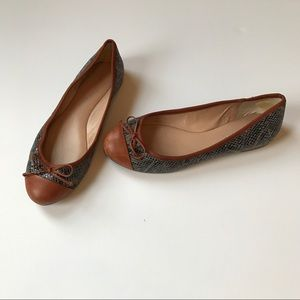 Banana Republic Snakeskin and Leather Ballet Flats