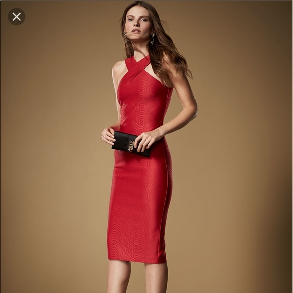c51222649 Ted Baker Red Erskine Snake Jacquard Midi Dress. M 5923a7f0fbf6f96847028515