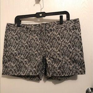 Kid Express Pants - Express Shorts Size 12 💕
