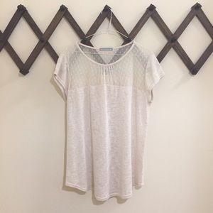 Olivia Moon Tops - NWOT Boho Sheer Polka Dot Lace Short Sleeve Top