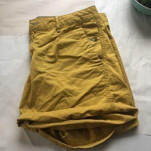GAP Pants - NWOT Gorgeous Colored Gap Cuffed Shorts