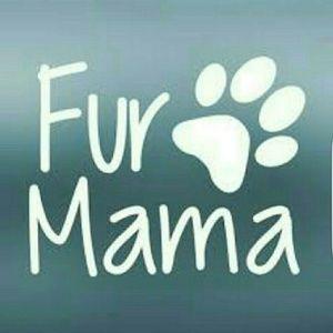 🐈 Proud Member: Fellow Fur Mamas of Posh 🐕
