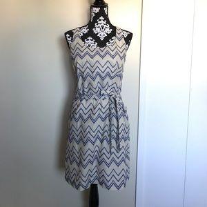 Ann Taylor Loft Cotton Shift Dress