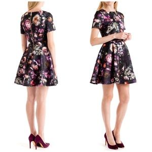 Ted Baker Tamary Floral Print Skater Dress