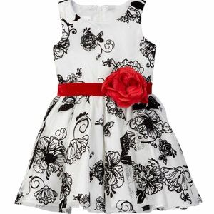 Nanette Baby Other - Nanette baby special occasion dress