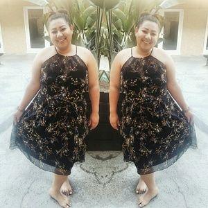 City Chic Dresses & Skirts - City Chic Floral Dress L