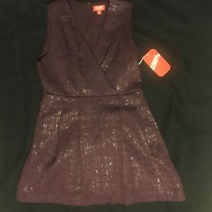 Kirna Zabete Dresses & Skirts - NWT Kirna Zabete for Target Shiny Plum Dress