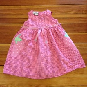 Youngland Other - Youngland Pink Seersucker Strawberry Dress 4T