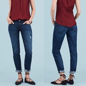 Anne Taylor Loft Jeans