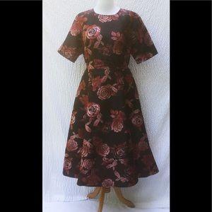 eshakti Dresses & Skirts - New Eshakti Rose Fit & Flare Dress 20W