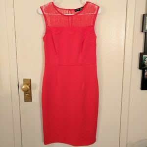  Dorothy Perkins Dress - Size 8 US - Worn Once