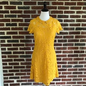 NWT Beautiful Yellow Lace Vintage Inspired Dress