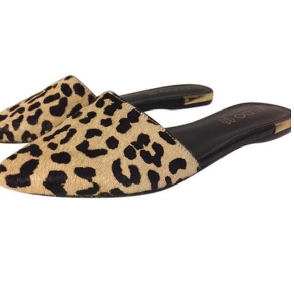 Aldo Shoes | Aldo Luma Leopard Pointed