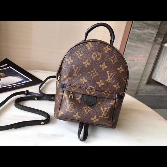 Louis Vuitton PALM SPRINGS BACKPACK MINI 55cd07cefaa4a
