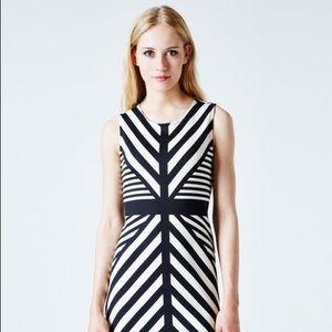 Leota Dresses & Skirts - LEOTA Mia sheath dress in Stripe