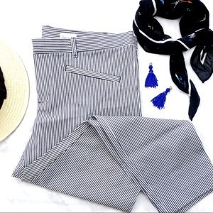 White and Navy Railroad Stripe Skinny Ankle Pants
