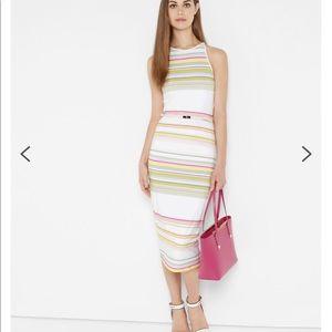 Ted Baker Danabel Carousel Striped Dress