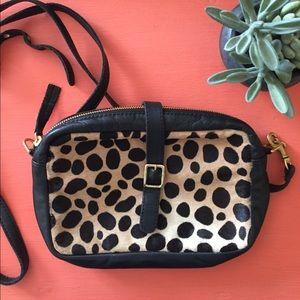 Clare Vivier Handbags - 🌵Clare V. Leopard Print Crossbody