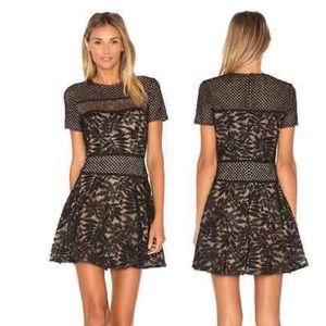 BCBG Eleanor Lace-Blocked Dress NWT