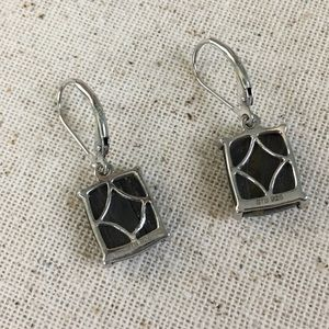 Jewelry - Tiger Iron Platinum Over Sterling Earrings